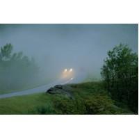 Какие лампы в противотуманках помогут при тумане, как себя вести на дороге?